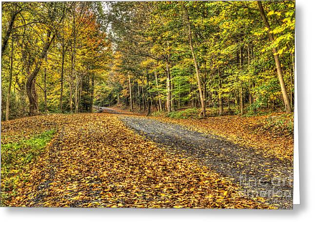 Road Into Woods Greeting Card