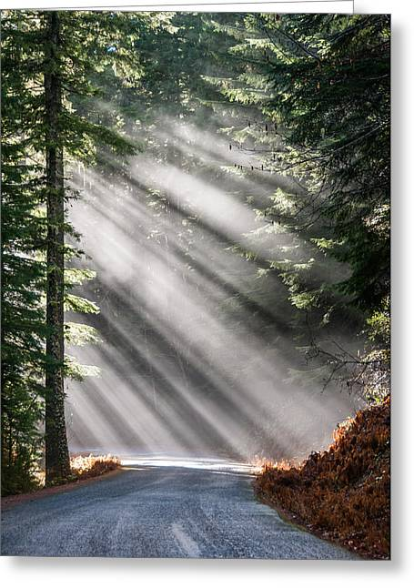 Road Less Travelled Greeting Card by Brian Bonham