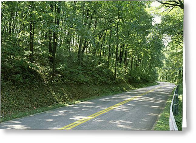 Road Passing Through A Forest, Carroll Greeting Card