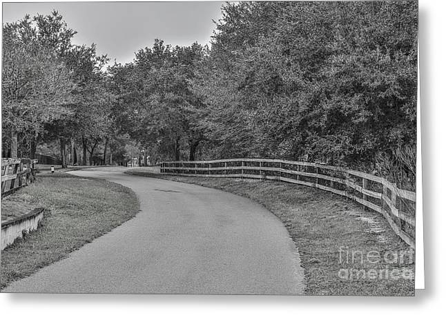 Road Path Greeting Card by Mina Isaac