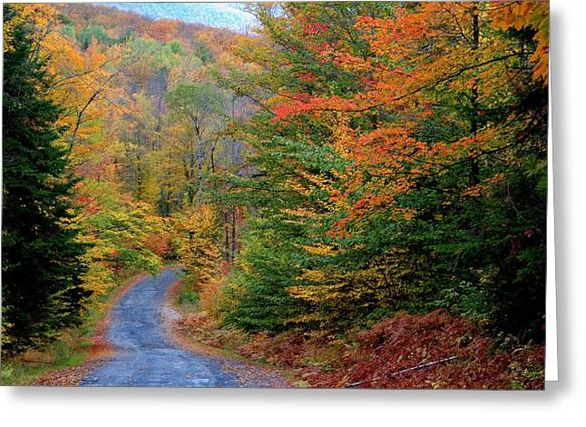 Greeting Card featuring the photograph Road Through Autumn Woods by Larry Landolfi