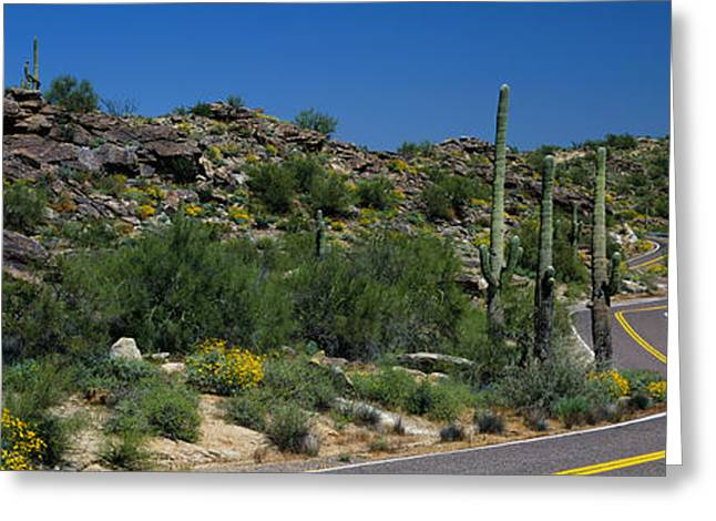 Road Through The Desert, Phoenix Greeting Card by Panoramic Images
