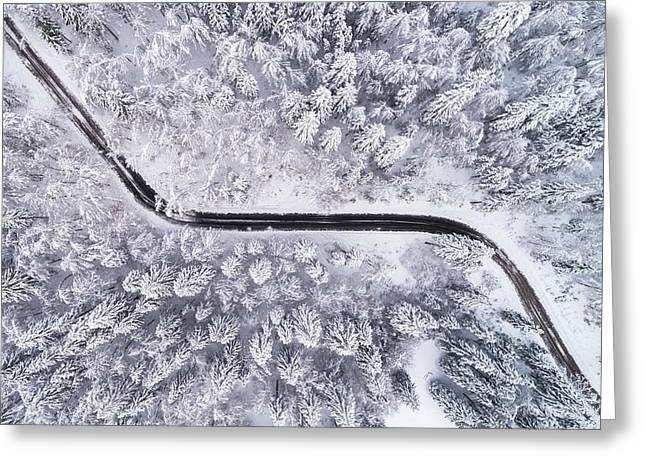 Road Through The Winter Forest Greeting Card
