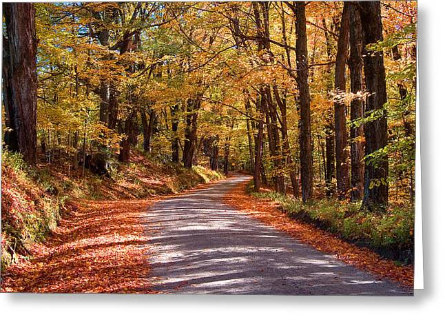 Greeting Card featuring the photograph Road Through Woods by Larry Landolfi