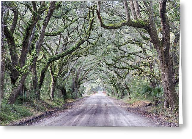 Road To Botany Bay Greeting Card