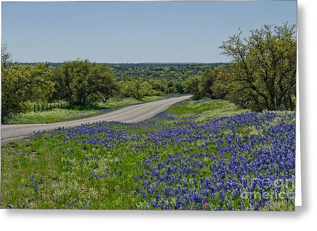 Road To Castell Greeting Card