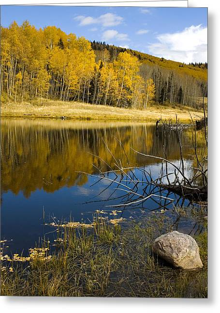 Road To Taos Greeting Card by Jerry McElroy