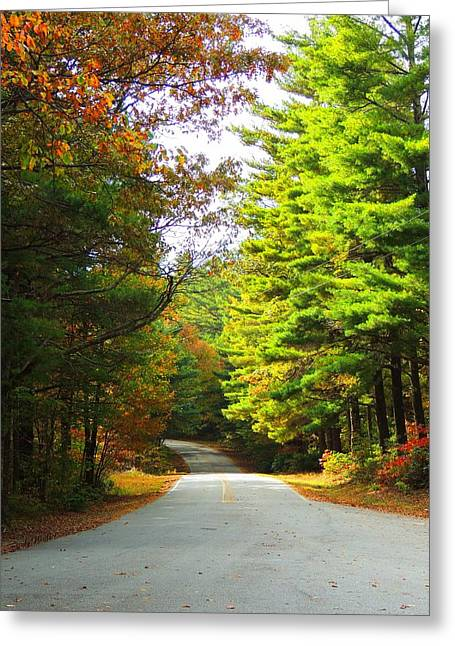 Road To The Chapel Greeting Card by Judy  Waller
