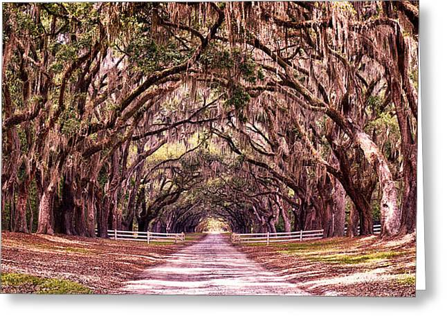 Road To The South Greeting Card