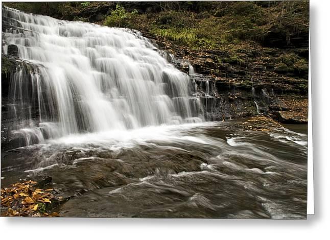 Roaring Falls Salt Springs Greeting Card by Christina Rollo