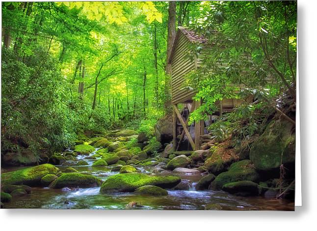 Roaring Fork Mill Greeting Card by Carolyn Derstine