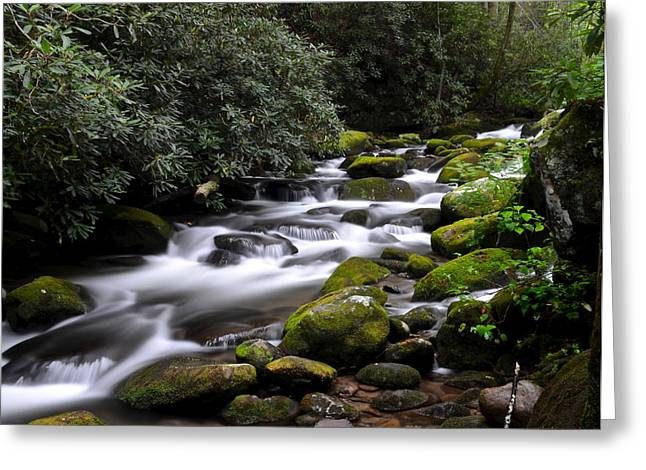 Roaring Fork Greeting Card by Frozen in Time Fine Art Photography