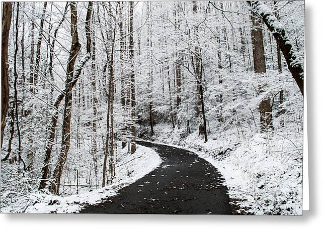 Roaring Fork Snowy Road Greeting Card by Debbie Green