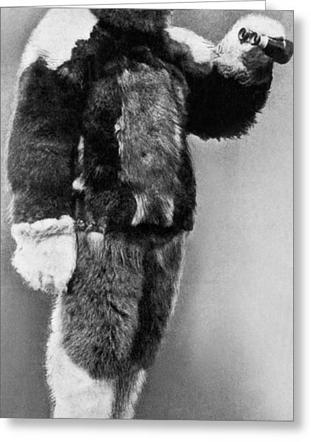 Robert E. Peary In Fur Greeting Card