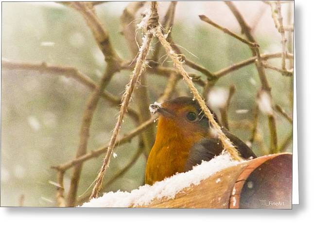 Robin In Winter Greeting Card by Yvon van der Wijk
