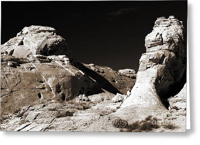 Rock Chatter Greeting Card by John Rizzuto