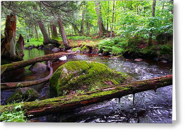 Rock Creek Greeting Card by Brook Burling