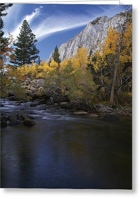 Rock Creek Canyon Gold Greeting Card