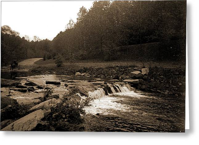 Rock Creek, Zoo Park National Zoological Park Greeting Card