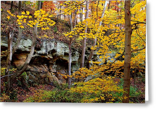 Rock Fall Gorge Greeting Card