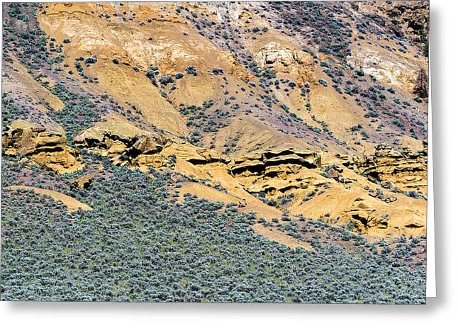 Rock Formations And Sagebrush Greeting Card by Michael Russell