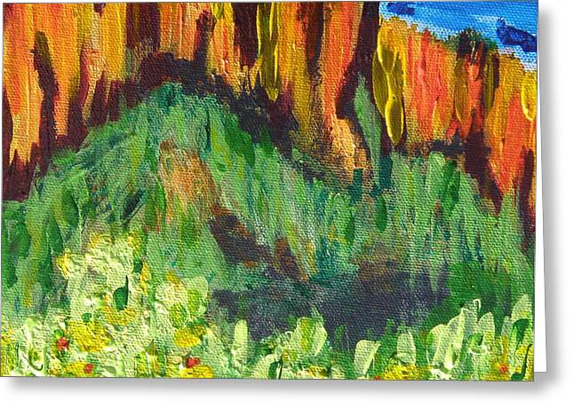 Rock Of Many Colors Greeting Card by Marcia Weller-Wenbert