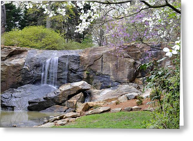 Rock Quarry Falls In Greenville Sc Cleveland Park Greeting Card