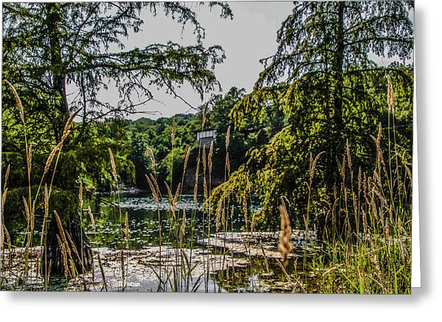 Rock Quarry Greeting Card by Ray Congrove