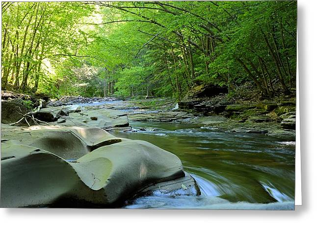 Rock Run #1 - Loyalsock State Forest Greeting Card