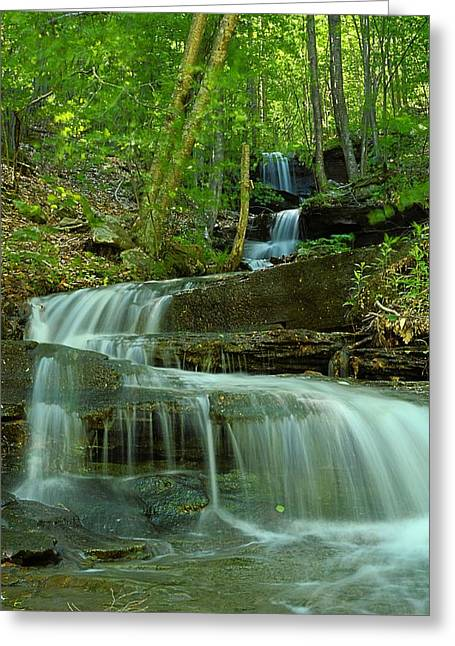 Rock Run Tributary Falls #1 Greeting Card