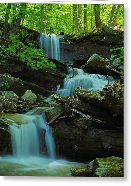 Rock Run Tributary Falls #2 Greeting Card