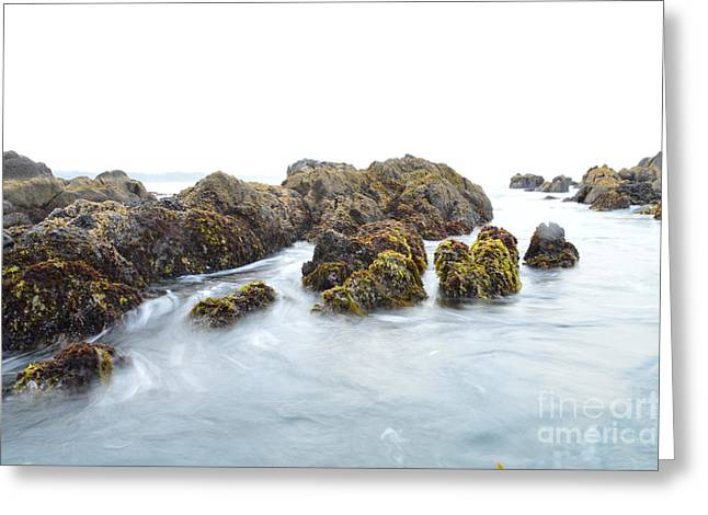 Rock The Seascape Greeting Card by Sheldon Blackwell