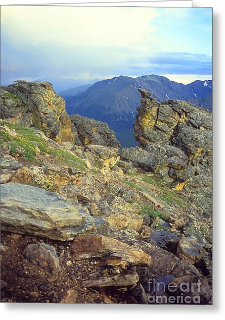 Rockcut In Rocky Mtn National Park Greeting Card