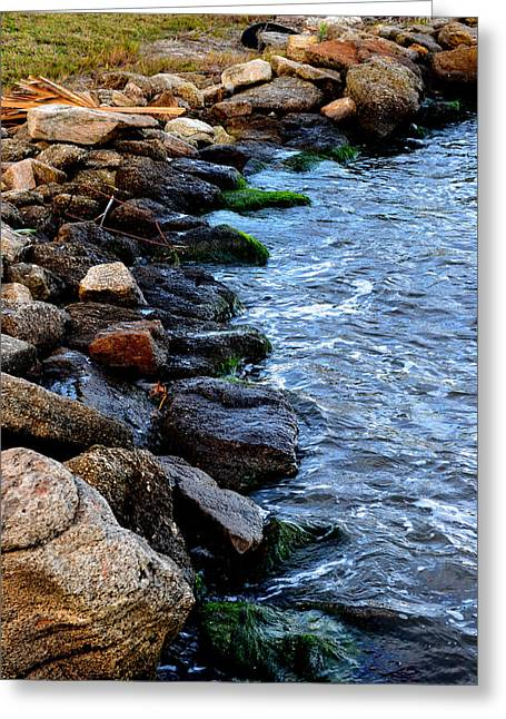 Rocks Along River Greeting Card by Victoria Clark