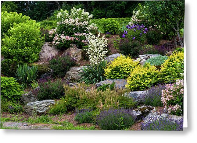 Rocks And Plants In Rock Garden Greeting Card