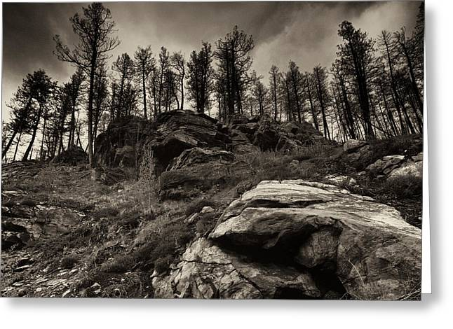 Greeting Card featuring the photograph Rocks And Trees And Trees And Rocks by Trever Miller