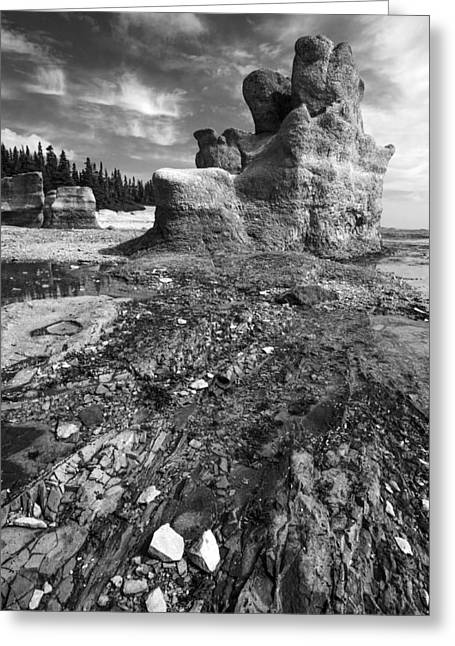 Greeting Card featuring the photograph Rocks by Arkady Kunysz