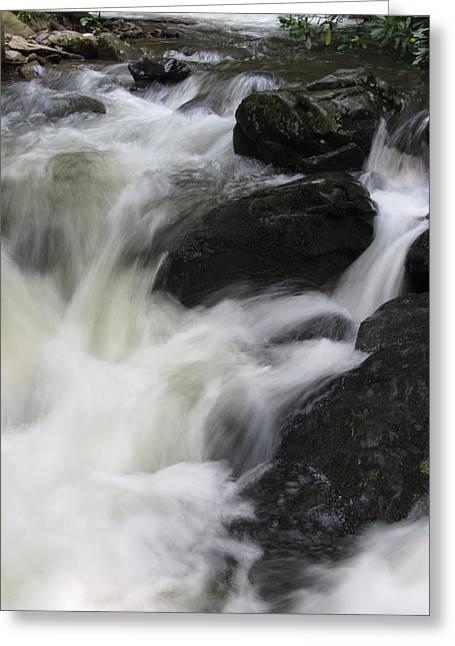 Rocks At Bushkill Greeting Card by Richard Reeve
