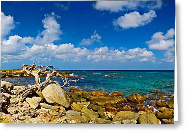 Rocks At The Coast, Aruba Greeting Card by Panoramic Images