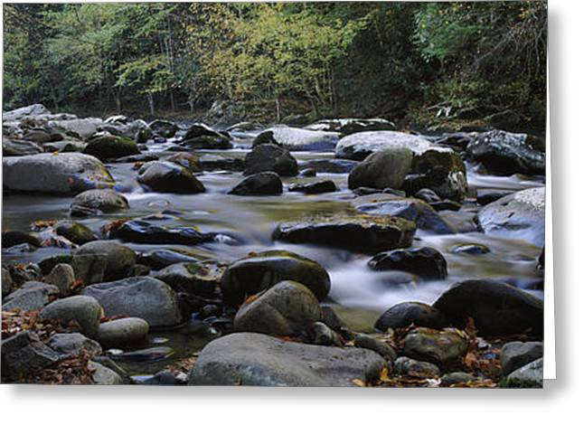 Rocks In A River, Great Smoky Mountains Greeting Card by Panoramic Images