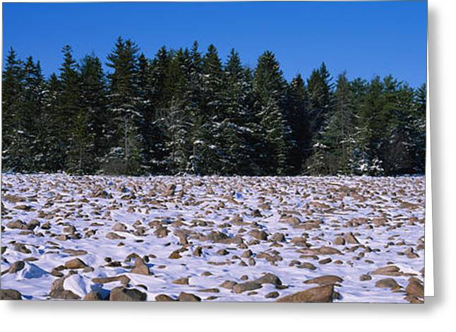 Rocks In Snow Covered Landscape Greeting Card