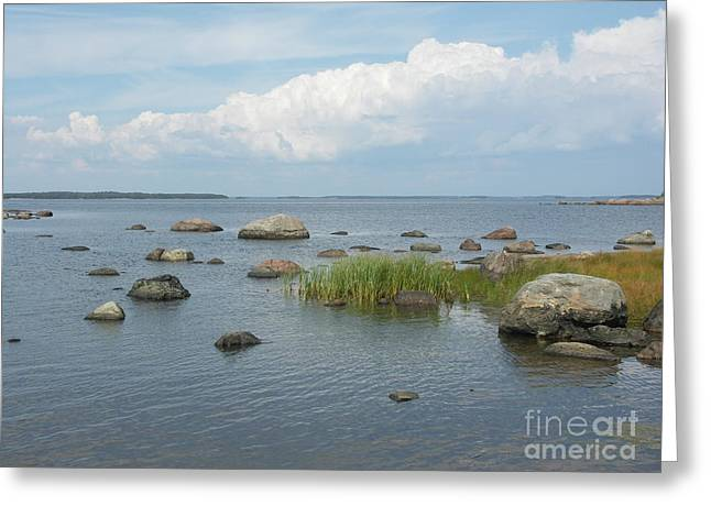 Rocks On The Baltic Sea Greeting Card