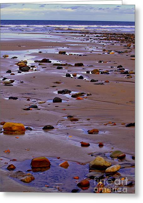 Rocks On The Seashore Greeting Card