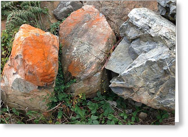 Rocks Greeting Card by Ron Torborg