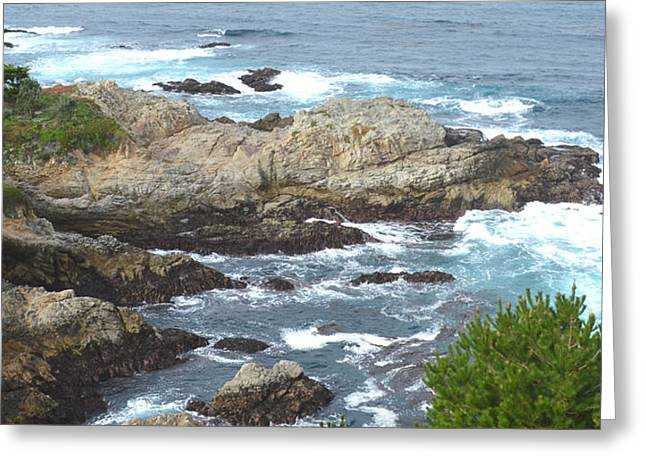 Rocky Cove Detail Greeting Card by Barbara Snyder