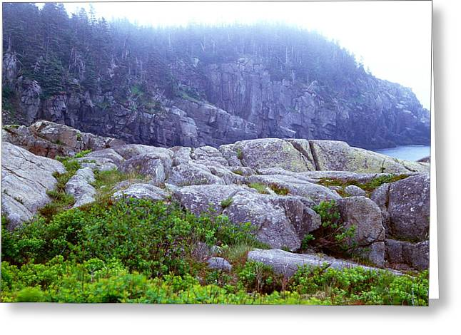 Rocky Maine Coast Greeting Card by Amanda Kiplinger
