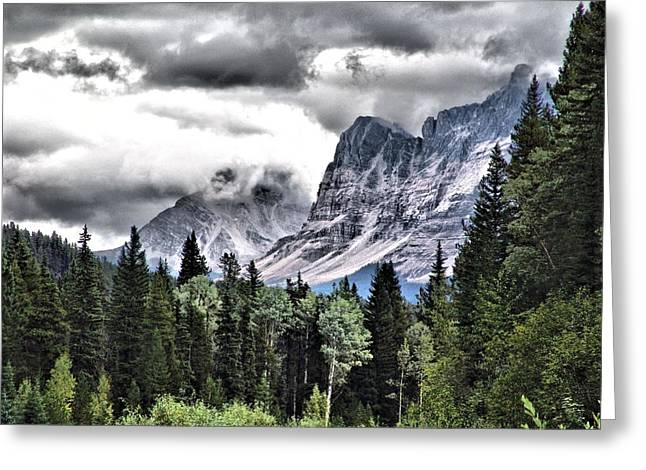 Rocky Mountain Beauty Greeting Card by Janet Ashworth