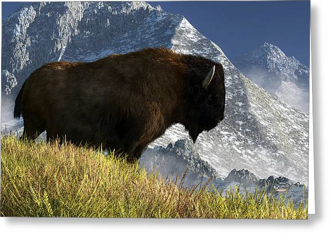 Rocky Mountain Buffalo Greeting Card