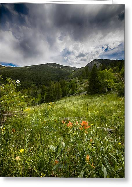 Rocky Mountain Meadow Greeting Card by Garett Gabriel