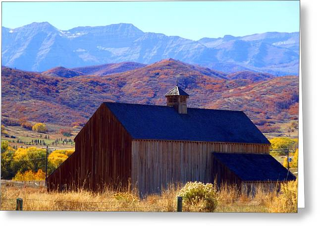 Greeting Card featuring the photograph Rocky Mountain Retreat by Jackie Carpenter